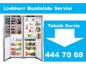 Liebherr Buzdolabı Teknik Servis
